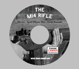 The M-14 disc
